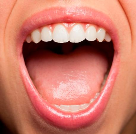 bouche (source pour la Science.fr)